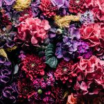 Poetsen en af en toe… kijken in mijn plaats