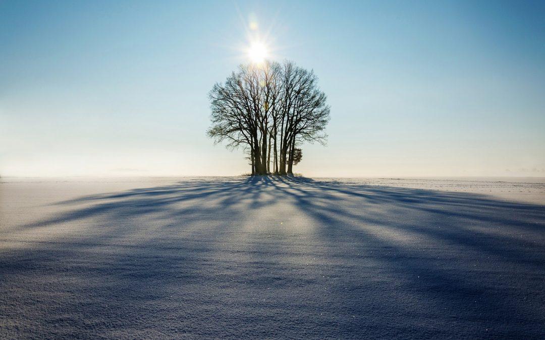 Gedichtendag – wintervrijheid